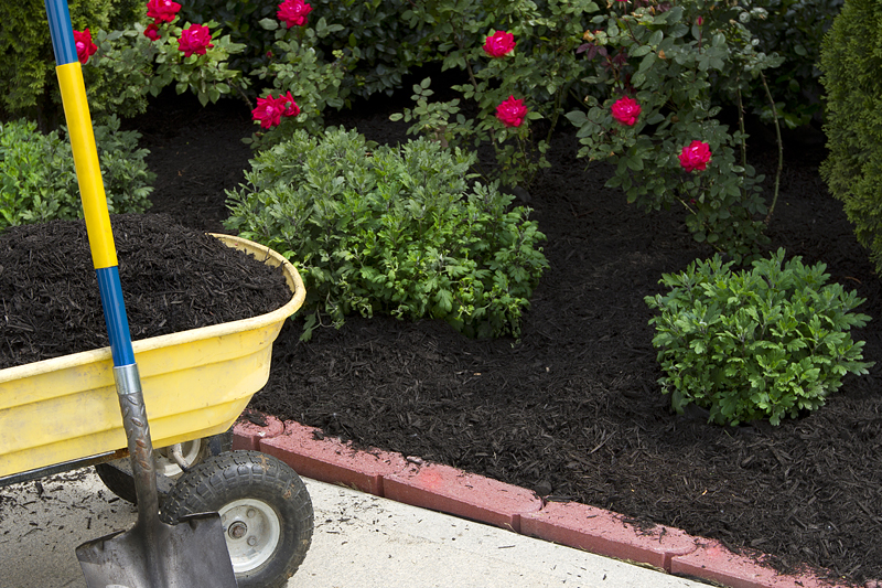 Mulch For Delivery In Harford.